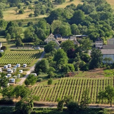 Producer Profile: Weingut Studert-Prüm