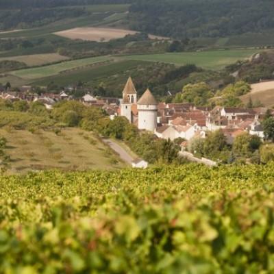 Bailly Lapierre NV Crémant de Bourgogne Réserve Brut