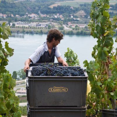 E. Guigal 2015 Crozes-Hermitage Rouge