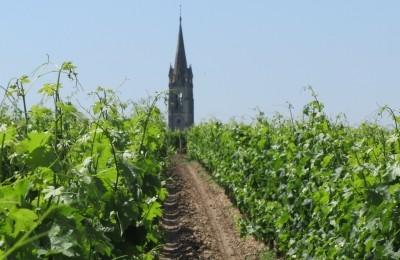 6 Interesting Facts About Bordeaux