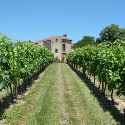 Château Argadens 2016 Bordeaux Blanc