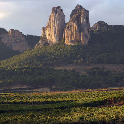 Muga 2013 Rioja Reserva