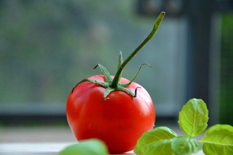 Summer Bounty – Fresh Tomato Recipes & Wine Picks