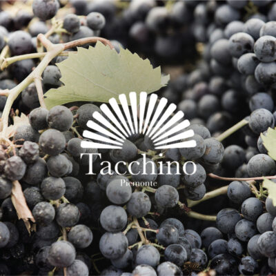 Producer Profile: Luigi Tacchino